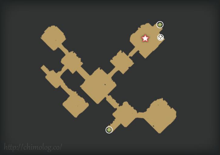 map29