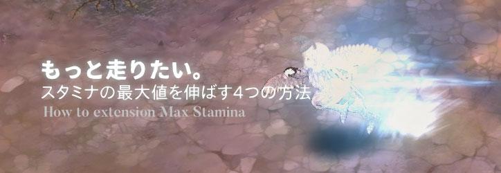 tos-max-stamina-extension