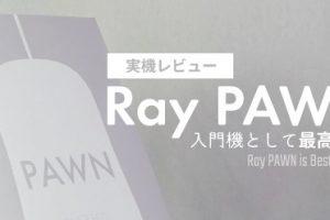 「Ray PAWN」を実機レビュー:入門機として最高のコスパと性能