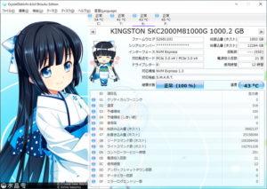 Kingston KC2000をレビュー(Crystal Disk Info)
