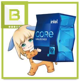 Core i9 11900Kの評価(Bランク)